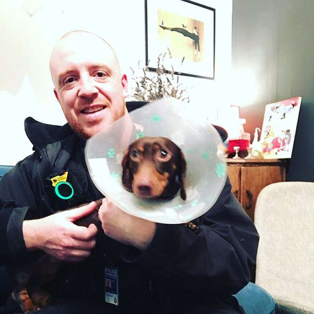 Back home! Ruby the miniature dachshund snatched from petrol station by dognappers is reunited with her grateful owner after police raid