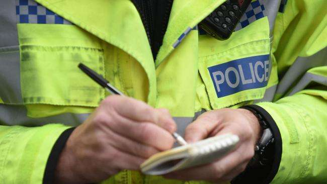 Dog stolen from vehicle in Malton turns up on doorstep after appeal