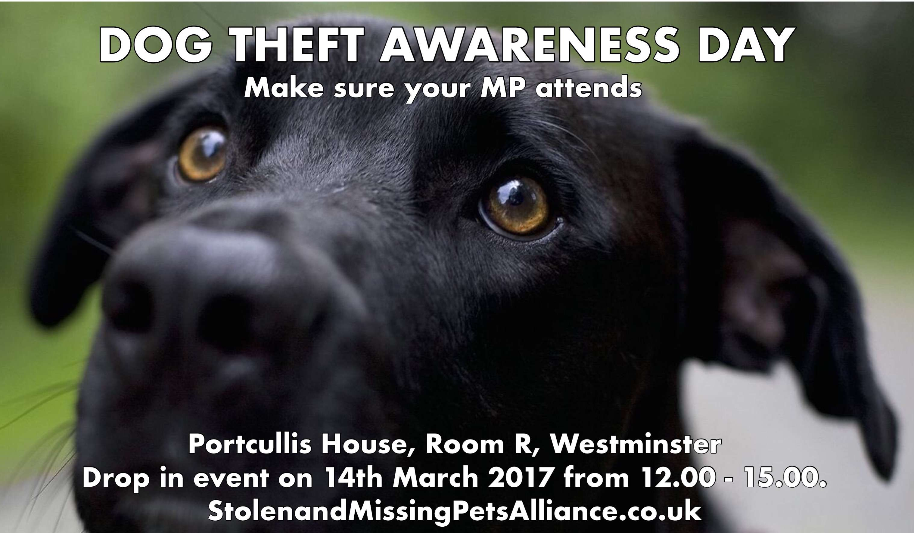 SAMPA LAUNCHES DOG THEFT AWARENESS DAY