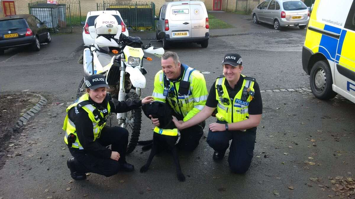 Stolen Guide Dog quickly recovered by the off-road bike in Ecton Brook