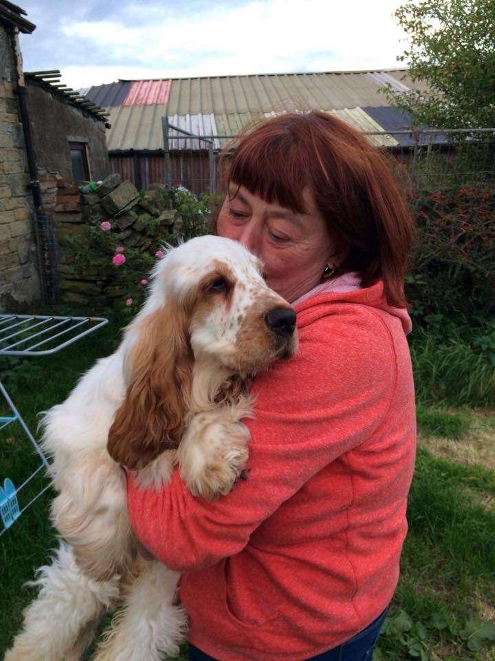 RIP BENTLEY 💔 Heartbreaking update on this reunited stolen dog.