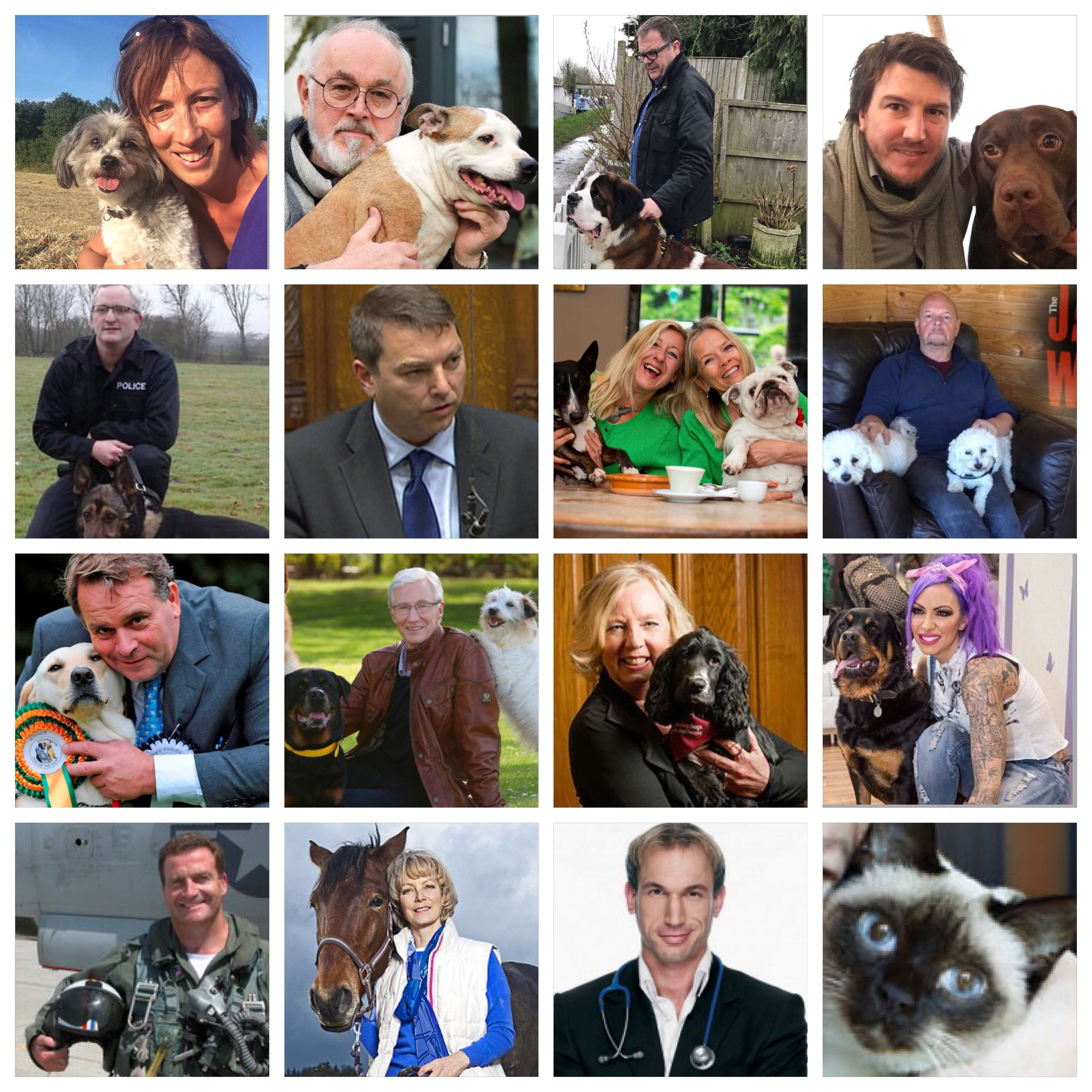Celebrity #AnimalHeroes supporting the #PetTheftPetition