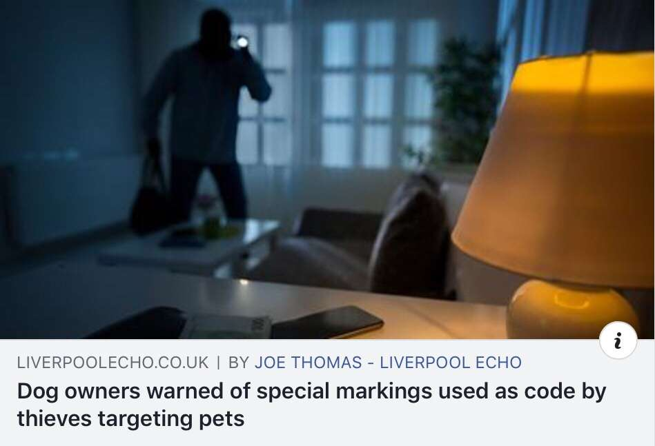 Dog owners are being told that markings are sometimes used as a code by criminals intent on stealing their precious pets. #PetTheftReform