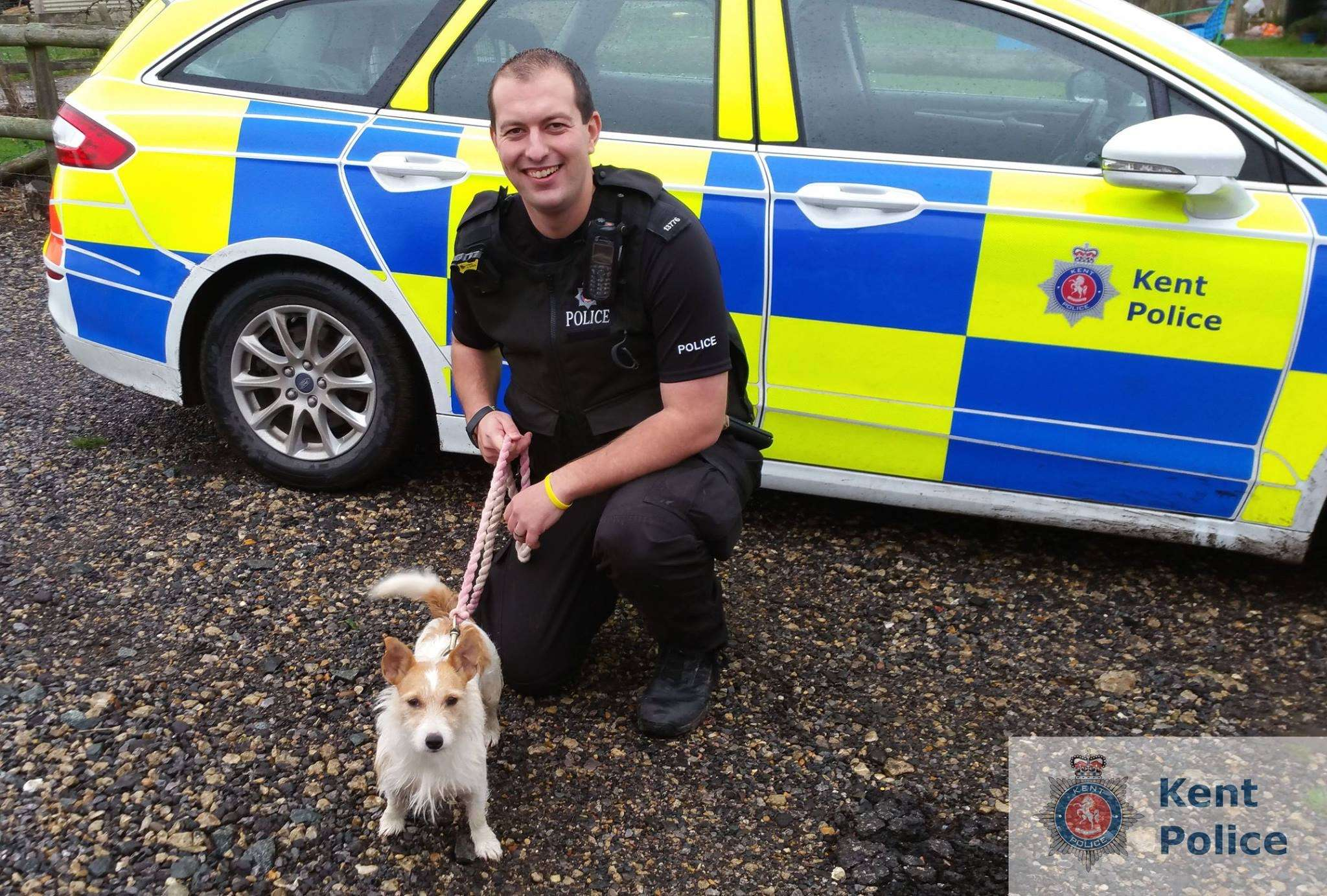 Kent Police: We have re-united a dog with its owners three and a half years after it was reported stolen from Eastchurch, Kent. #PetTheftReform