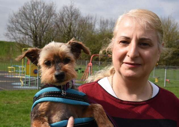 Harold Hill grandmother reunited with beloved dog after more than a year after it was found less than a minute from her home #PetTheftReform