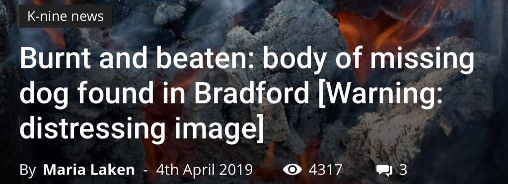 Missing dogs body found burnt and mutilated, Bradford.  Please sign the #PetTheftReform petition.