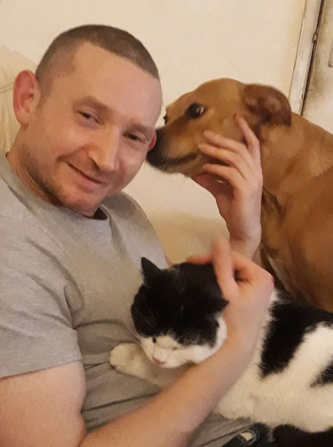 Delighted to see another cat reunited after being missing for nearly 11 months!