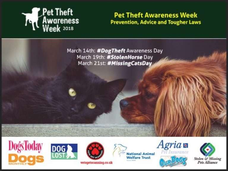 PET THEFT AWARENESS WEEK  ‪14th to 21st March‬