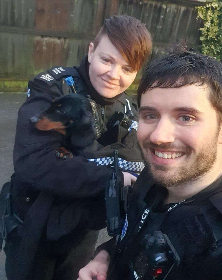 Lola reunited with thanks to Leicestershire Police #PetTheftReform