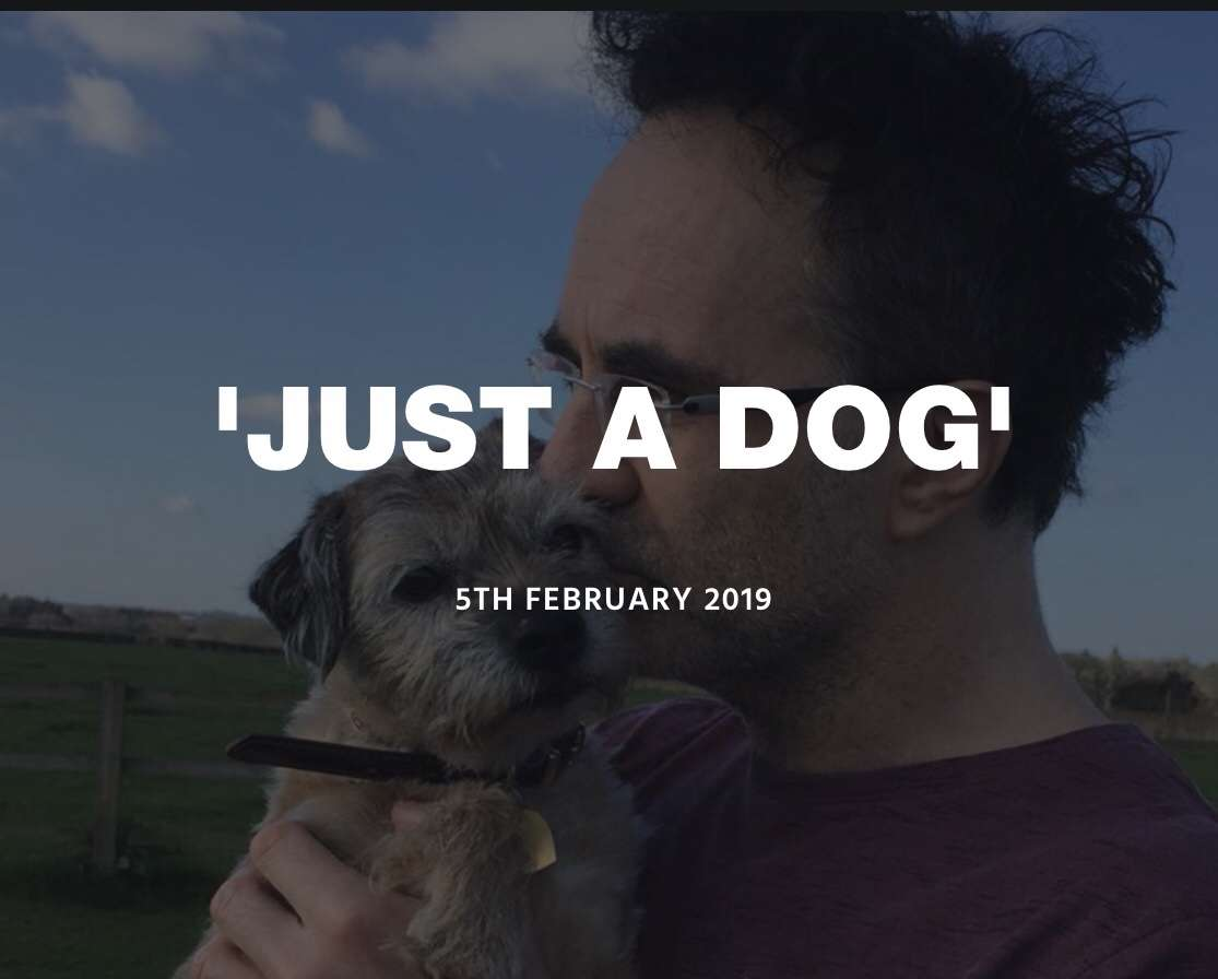 'Just a Dog' – Professor Noel Fitzpatrick #PetTheftReform #ScanMe #CheckThatChip