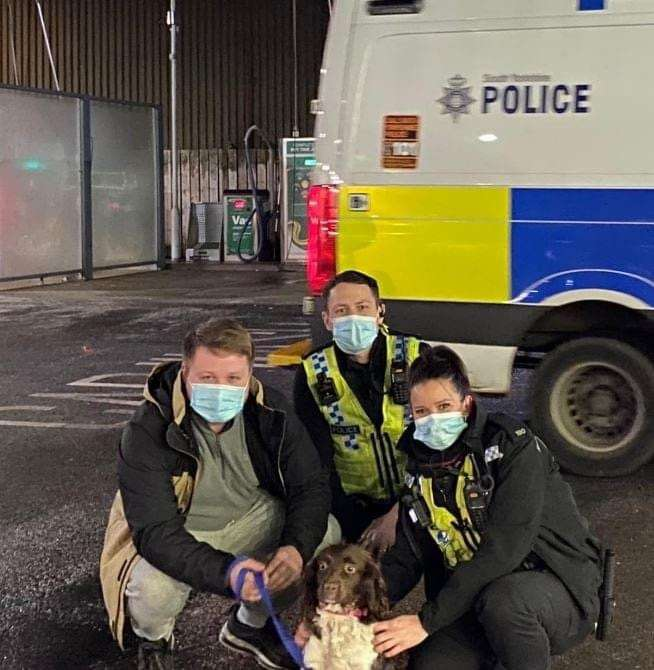 POLICE UPDATE: Stolen dog Lily reunited with owners #PetTheftReform