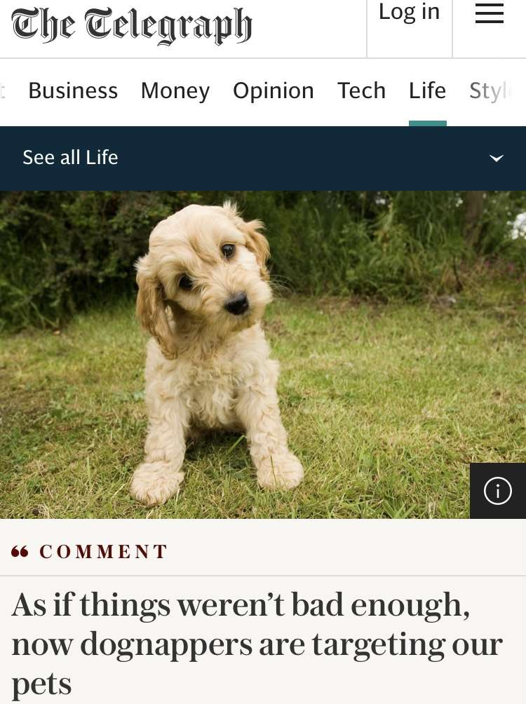 As if things weren't bad enough, now dognappers are targeting our pets #PetTheftReform