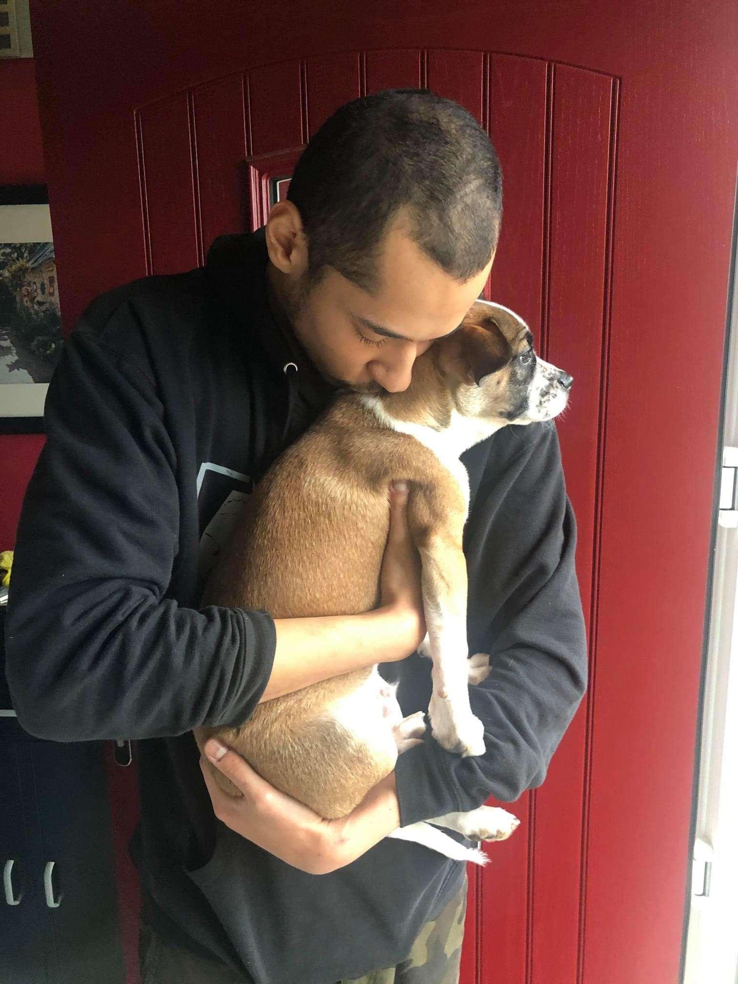 Stolen MOXLEY reunited #PetTheftReform