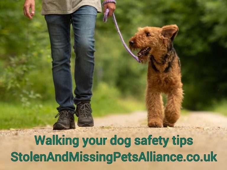SAFETY WHEN WALKING YOUR DOG #PetTheftReform