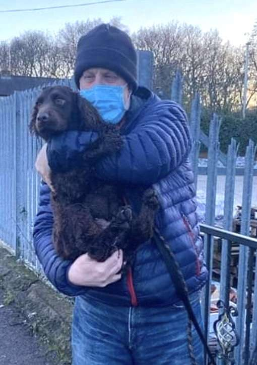 Warning to dog owners after theft of Flora a Wakefield man's beloved cocker spaniel outside Co-op store is reunited #PetTheftReform