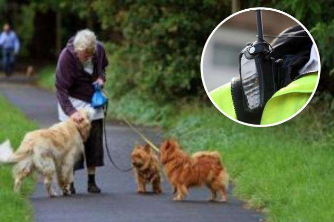 Dog thieves in Swindon are targeting women walking their pets #PetTheftReform
