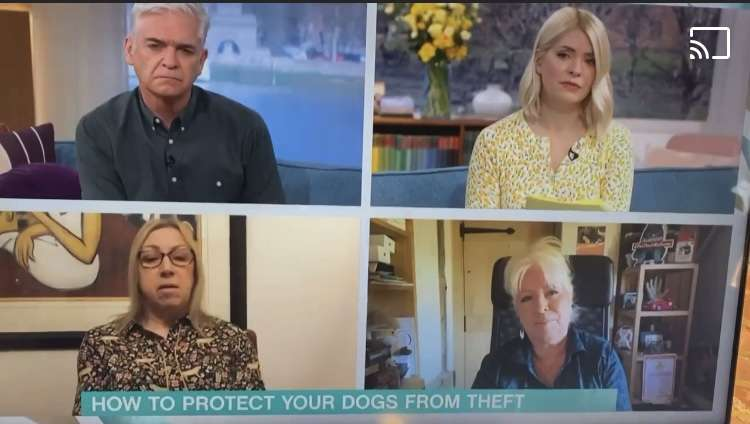Dog Theft getting more media attention on TV. Have you seen Nancy?  #PetTheftReform